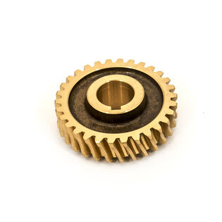 Worm Gear (LH) 30 Teeth