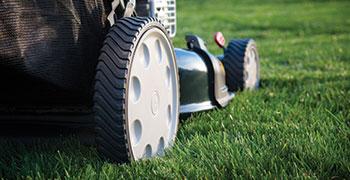 11-inch-wheels